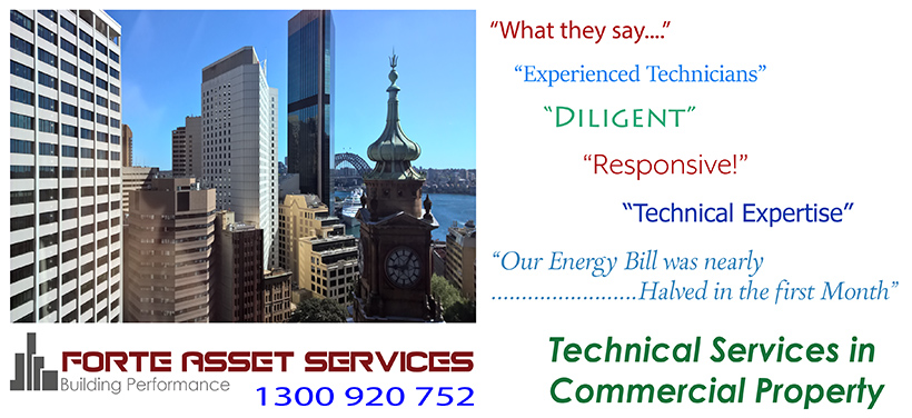 energy conservation and technical expertise in commercial buildings management